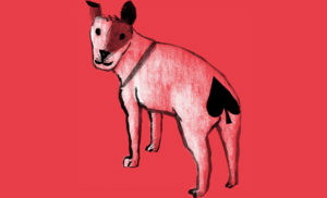 Žolíkové karty s tématikou psa